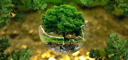 ochrona-srodowiska-praca