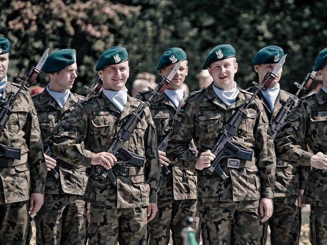 Polish-Army-Flickr