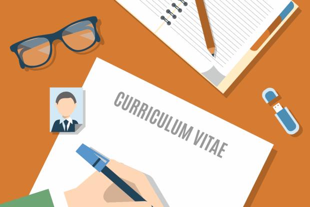 candidate-cv-writing
