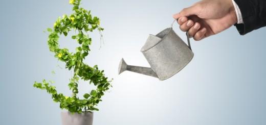 grow-your-money